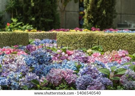 Beautiful garden and water fountain #1406540540