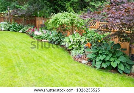 Beautiful garden arrangement of annuals, perennials and foliage. #1026235525