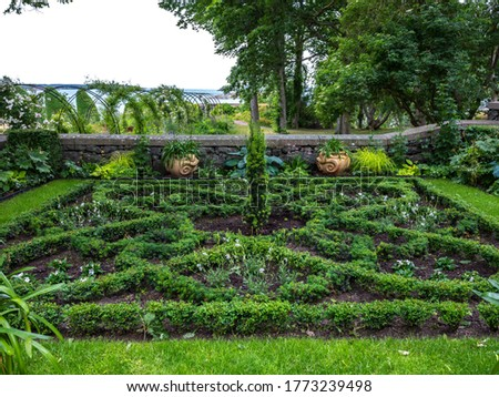 Beautiful garden arrangement with small hedge in a square pattern surrounding a boxwood plant in the middle. A stone wall with plants in two pots cross the image and tree foliage is in the background.