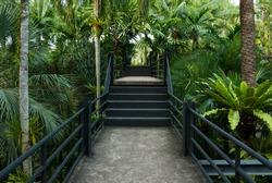 beautiful garden corridor - natural open corridor in botanic park