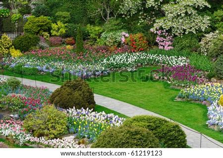 Beautiful garden in spring, victoria, british columbia, canada