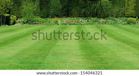 Beautiful Garden Lawn