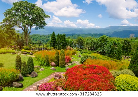 Beautiful garden of colorful flowers on hill. #317284325