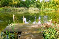 Beautiful garden pond with a pond jetty