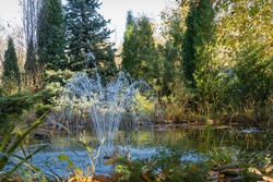 Beautiful garden pond with cascading fountain and stone banks against backdrop of evergreens. Evergreen landscaped garden. Sunny autumn day. Autumn nature design concept. Place for text