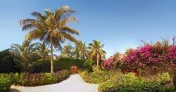 Beautiful garden with door to the beach in Sali, Mbour City, Senegal, Africa. Panorama.