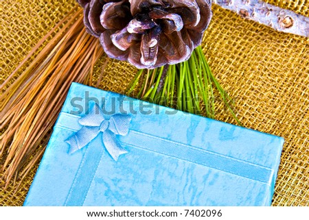 Beautiful gift with ribbon on decorations