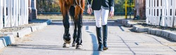 Beautiful girl and sorrel horse in jumping show, equestrian sports. Light-brown horse and girl in uniform going to jump. Horizontal web header or banner design.