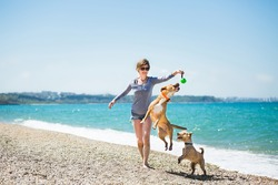 Beautiful girl in a blue blouse and shorts playing with dogs on the beach