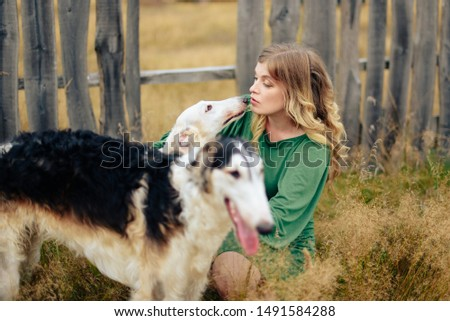 beautiful girl in a dress on nature with Russian greyhound dogs #1491584288
