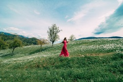 Beautiful girl with long hair in pink red dress in daffodil field, blooming narcissus.