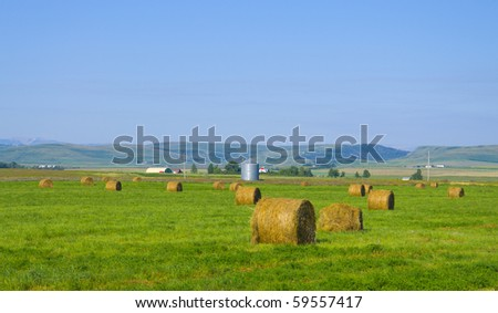 Beautiful golden hay bales on a farmers field as background, Alberta, Canada