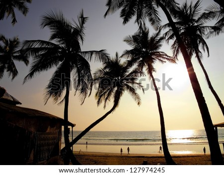 Beautiful golden sunset on the beach, GOA, India