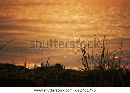 Beautiful golden sunset over water Raznas lake, Latvia #612761795