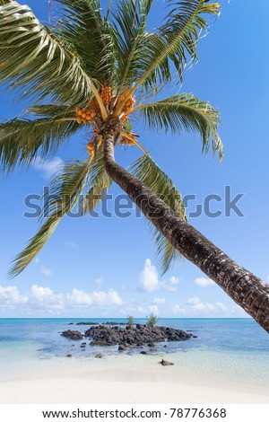 Beautiful Grande Baie, Mauritius