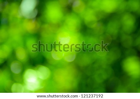Beautiful green bokeh. Bright natural background.