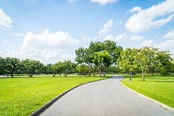 Beautiful green city park with blue sky. Pathway and beautiful trees track for running or walking and cycling relax in the park on green grass field on the side. Sunlight and flare background concept.