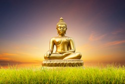 Beautiful green cornfield of Golden Buddha statue on blue dramatic sunset sky texture background.