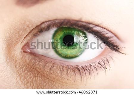 Beautiful green eye close up