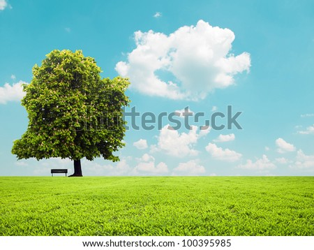 Beautiful green field and empty bench - Peaceful landscape view