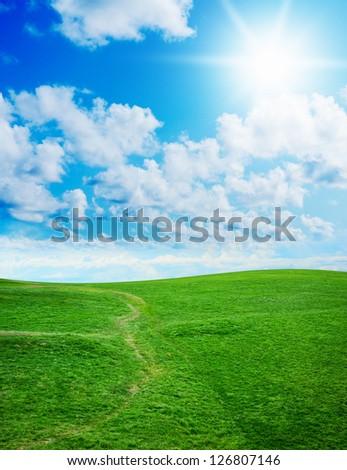Beautiful green grass against a blue sunny sky