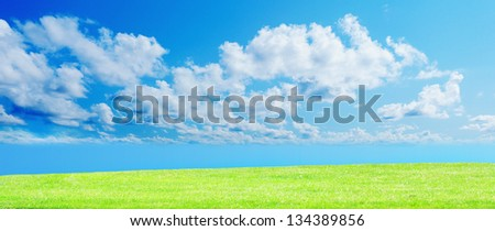 Beautiful green grass against a blue sunny sky