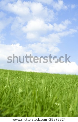 Beautiful green grass against blue sky and clouds representing perfect land. - stock photo