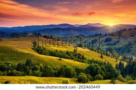 Beautiful green hills at dusk. Carpathian, Ukraine, Europe. Beauty world. - Shutterstock ID 202460449