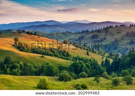 Beautiful green hills at dusk. Carpathian, Ukraine, Europe. Beauty world. - Shutterstock ID 202999483