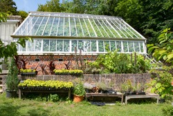 beautiful green house in the summer sun