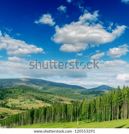 Beautiful green mountain landscape with trees in Carpathians. Bukovel region, Ukraine