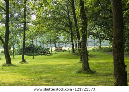 beautiful green park