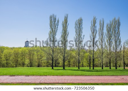 Beautiful green park & blue clear sky landscape. A line of tree ranges along a red brick path. A straight road in front of the a line of tree run horizontally across the bright flat green field.