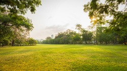 Beautiful green park garden with urban in morning