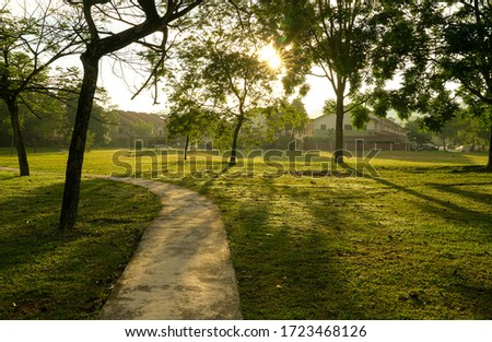 Beautiful green park with trees and jogging track. Sun rays and flares. Nature background. Stock fotó ©