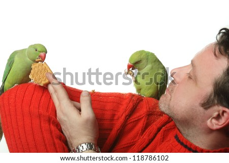 beautiful green parrots play with the Trainers
