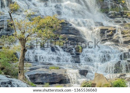Beautiful green tree with waterfall flowing background, Mae Ya Waterfall, Chom Thong District, Chiang Mai, Thailand. #1365536060