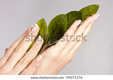 Beautiful hand girl with green leaves. studio