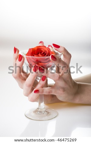Beautiful hand with perfect red manicure holding martini glass with red rose inside. youth and beauty concept