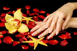 Beautiful hands with rose petals and delicate orchid