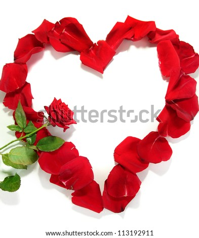 Beautiful heart of red rose petals with red rose isolated on white