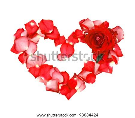 Beautiful heart of the petals