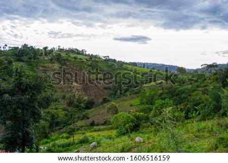 Beautiful hill landscape of nandi hills Kenya