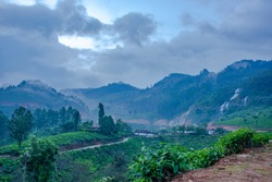 Beautiful Hill Station from South India.