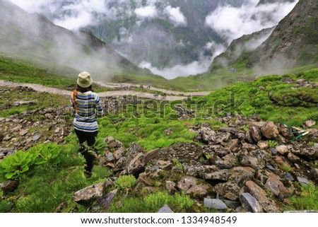 Beautiful Himalayan mountain ,Pictures of freedom and happiness,landscape covered with monsoon clouds with green forest in foreground in Himachal Pradesh, Valley of flower,India