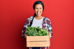 Beautiful hispanic woman holding wooden plant pot sticking tongue out happy with funny expression.