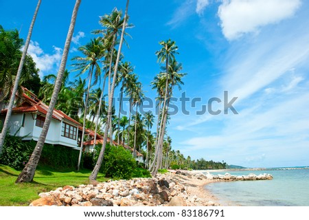 Beautiful house with palm trees on the beach