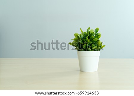 Beautiful houseplant with white flowerpot on light wooden office table texture and blue background captured by front view