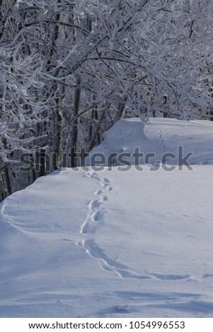 Beautiful Hungarian landscape captured in winter time Stock fotó ©