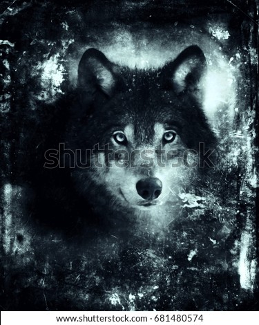 Shutterstock Beautiful illustration of wolf face. Halloween night background with mystical wolf. Awesome horror wallpaper.  Design for t-shirt print with wolf.